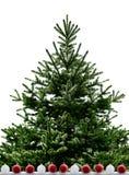 Weihnachtsbaum getrennt auf dem weißen Hintergrund Stockbild