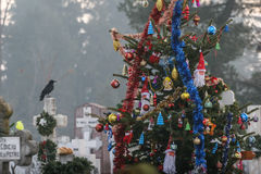 Weihnachtsbaum im Kirchhof Lizenzfreies Stockfoto