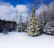 Weihnachtsbaum im Wald mit Spielwaren und Girlanden, blauer Himmel, Grußkarte Weihnachten und neues Jahr Lizenzfreies Stockbild