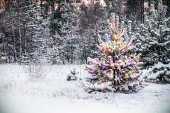 Weihnachtsbaum im Winterwald mit farbigen Lichtern Stockfotografie