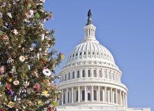Weihnachtsbaum am Kapitol-Gebäude lizenzfreie stockbilder