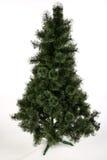 Weihnachtsbaum - keine Dekoration Stockbild