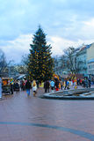 Weihnachtsbaum in Lemberg Lizenzfreies Stockbild