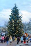 Weihnachtsbaum in Lemberg Stockbilder