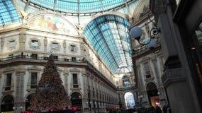 Weihnachtsbaum in Mailand, Italien Stockbild