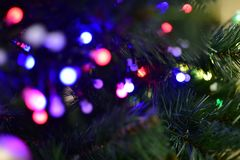 Weihnachtsbaum mit Girlande, Lichter von verschiedenen Farben lizenzfreie stockfotos