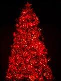 Weihnachtsbaum mit heller und roter Kugel. Lizenzfreie Stockfotografie