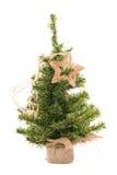 Weihnachtsbaum mit Stern lizenzfreies stockbild