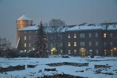 Weihnachtsbaum nahe Abendgebäude Stockfotos