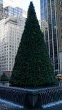 Weihnachtsbaum in New York Lizenzfreies Stockfoto