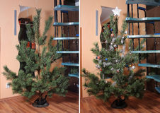 Weihnachtsbaum ohne und mit Weihnachtsdekorationen Lizenzfreies Stockbild
