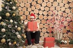 Weihnachtsbaum, Pferdeschlitten, Korb, Schnee, roter Beerenbusch, Dekorationen lizenzfreie stockbilder