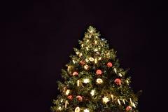 Weihnachtsbaum in Straßburg stockfoto