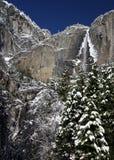 Weihnachtsbaum und Yosemite Falls Stockbilder