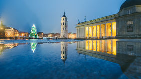 Weihnachtsbaum in Vilnius Litauen 2015 Lizenzfreies Stockbild