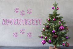 Weihnachtsbaum, Zement-Wand, Adventszeit bedeutet Advent Seasons Stockbild