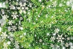 Weihnachtsbaum-Zusammenfassungshintergrund mit Schneeflocke Lizenzfreies Stockbild