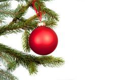 Weihnachtsbaum-Zweigrand getrennt Lizenzfreie Stockfotografie