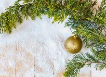 Weihnachtsbaumast und -baum spielen im Schnee Lizenzfreie Stockfotografie