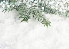 Weihnachtsbaumaste angeschmiegt im Schnee Stockbilder