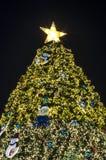 Weihnachtsbaumbeleuchtung Stockfotos