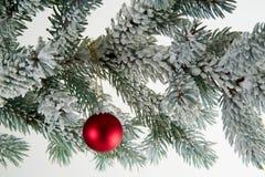 Weihnachtsbaumflitter Stockfotos