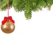 Weihnachtsbaumzweig mit Kugel Stockbild