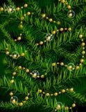 Weihnachtsbaumzweige und dekorative Korne. Lizenzfreies Stockbild