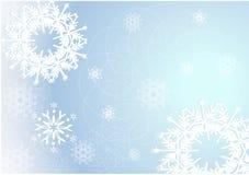 Weihnachtsblumenhintergrund Stockbilder