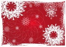Weihnachtsblumenhintergrund Stockfotos