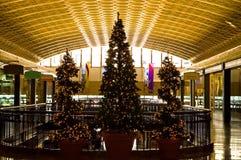 Weihnachtsbäume im Einkaufszentrum Stockbild