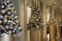Weihnachtsbäume im Luxusmall Stockbilder