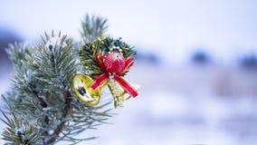 Weihnachtsdekoration auf natürlicher Tanne Lizenzfreies Stockfoto