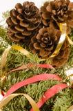 Weihnachtsdekoration des Pelzbaums und der Kegel Lizenzfreie Stockbilder