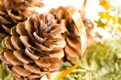 Weihnachtsdekoration des Pelzbaums und der Kegel stockfotografie