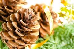 Weihnachtsdekoration des Pelzbaums und der Kegel lizenzfreies stockbild