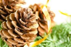 Weihnachtsdekoration des Pelzbaums und der Kegel Lizenzfreie Stockfotos