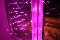Weihnachtsdekoration für die Fenster - rosa Lichter Lizenzfreie Stockfotografie