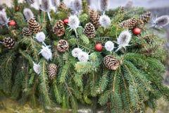 Weihnachtsdekoration mit Kiefernkegel und Silberdistel Stockbild