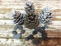Weihnachtsdekoration mit Kiefernkegeln färbte die weißen und roten Steine auf Holz stockfotos