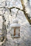 Weihnachtsdekoration mit Laternen-, Schnee- und Tannenbaumast Stockfoto