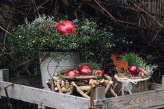 Weihnachtsdekoration mit roten Winteräpfeln und Granatapfel frui Lizenzfreie Stockbilder
