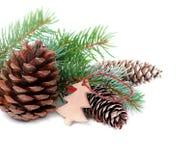 Weihnachtsdekoration mit Tannenbaum und Kegel lokalisiert auf einem weißen Hintergrund Lizenzfreie Stockbilder