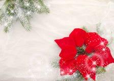 Weihnachtsdekoration, -ROT, -GRÜN und -WEISS Lizenzfreie Stockfotos