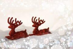 Weihnachtsdekoration, -ROT und -WEISS Stockfotos