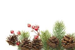 Weihnachtsdekoration, rote Beerenkegel-Tannenzweige lokalisiert auf Weiß Stockfoto