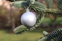 Weihnachtsdekoration, silberner Ball, der am Tannenbaum über grünem Hintergrund hängt Selektiver Fokus Stockfoto