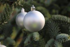 Weihnachtsdekoration, silberner Ball, der am Tannenbaum über grünem Hintergrund hängt Selektiver Fokus Stockfotos