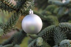 Weihnachtsdekoration, silberner Ball, der am Tannenbaum über grünem Hintergrund, selektiver Fokus hängt Stockfotografie