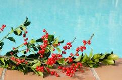 Weihnachtsdekorationen im Pool Stockbilder
